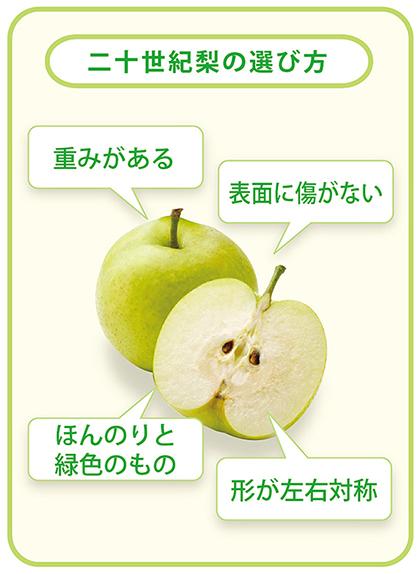 二十世紀梨の選び方
